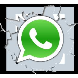 whatsapp al por mayor Macadamia Origen Natural