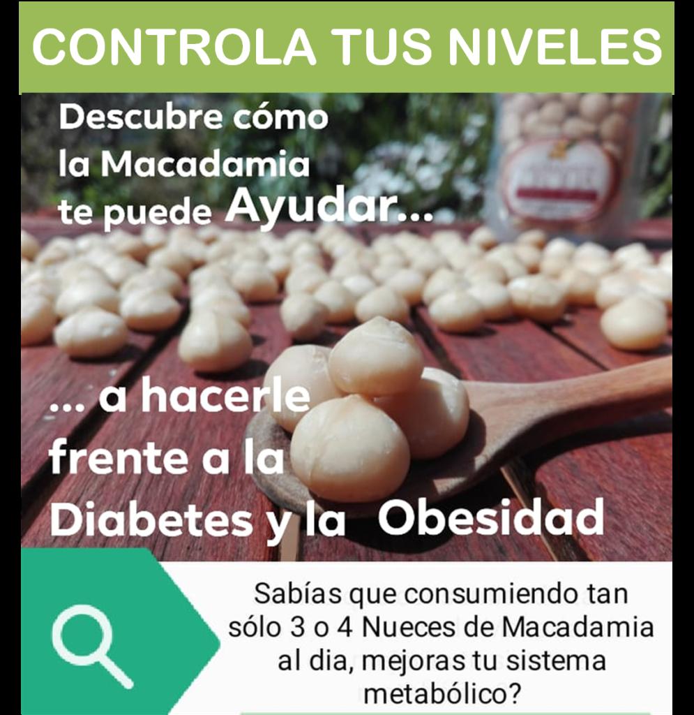 Mejora tu Sistema Metabólico consumiendo Nueces de Macadamia